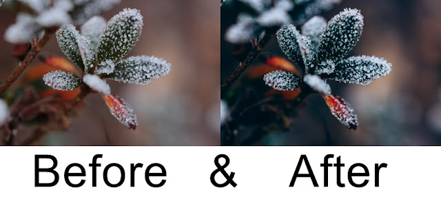 Winter, Lightroom, Photoshop, Fotografie, Eis, Katzenauge Photography