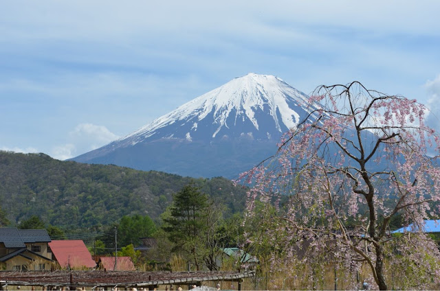 Images of Mt Fuji