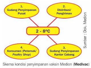 skema kondisi penyipanan vaksin ternak