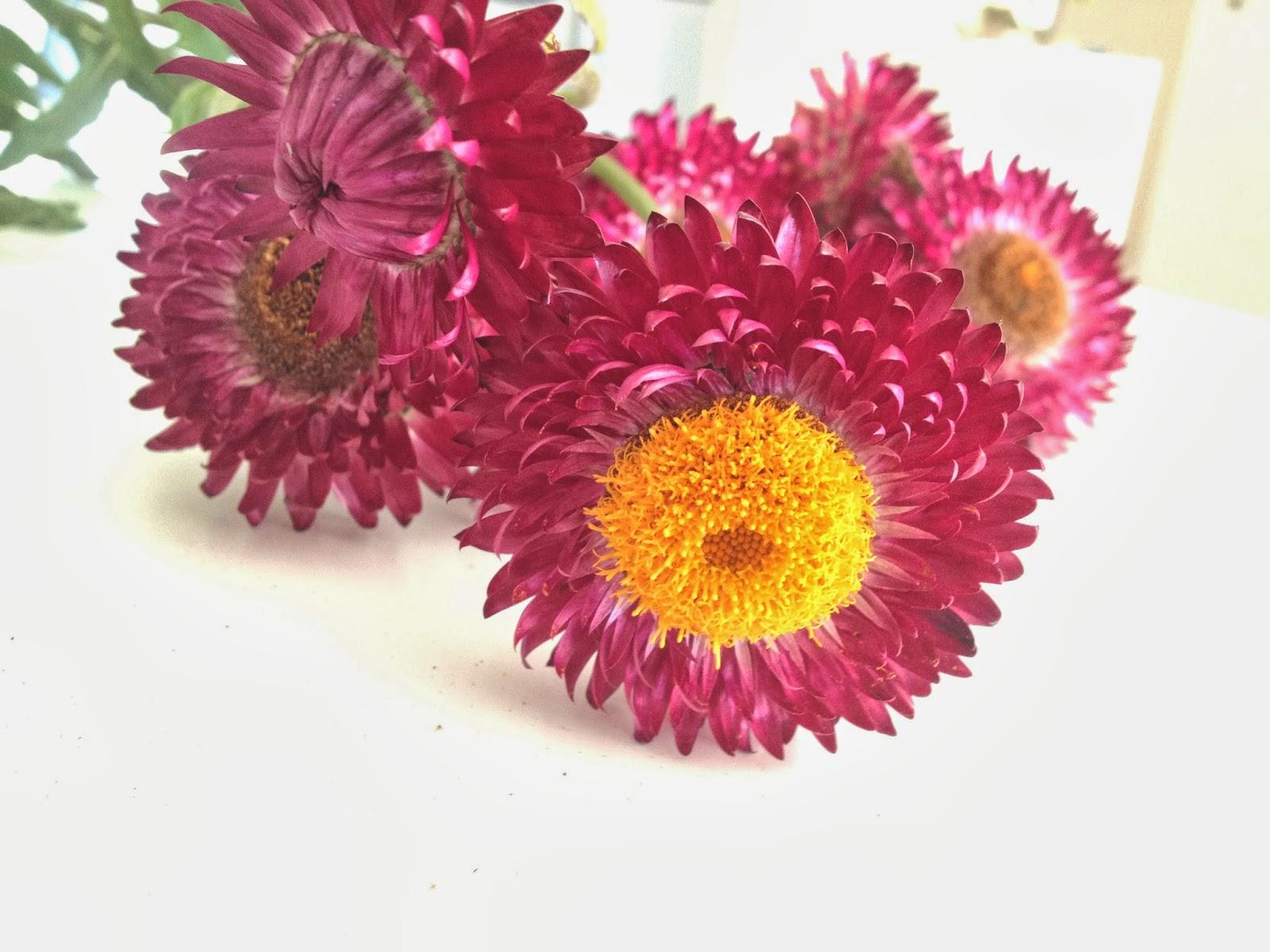 Tørkede blomster