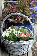 Spring Flower Basket Planter