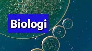tahap tahap metode ilmiah bioloogi