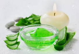 gel di aloe, proprietà del gel di aloe, gel di aloe in cosmesi, gel di aloe per la pelle, gel di aloe per i capelli