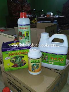 http://www.distributorpupuknasa.com/2017/10/distributor-pupuk-nasa-di-mandailing-natal-sumatera-utara.html
