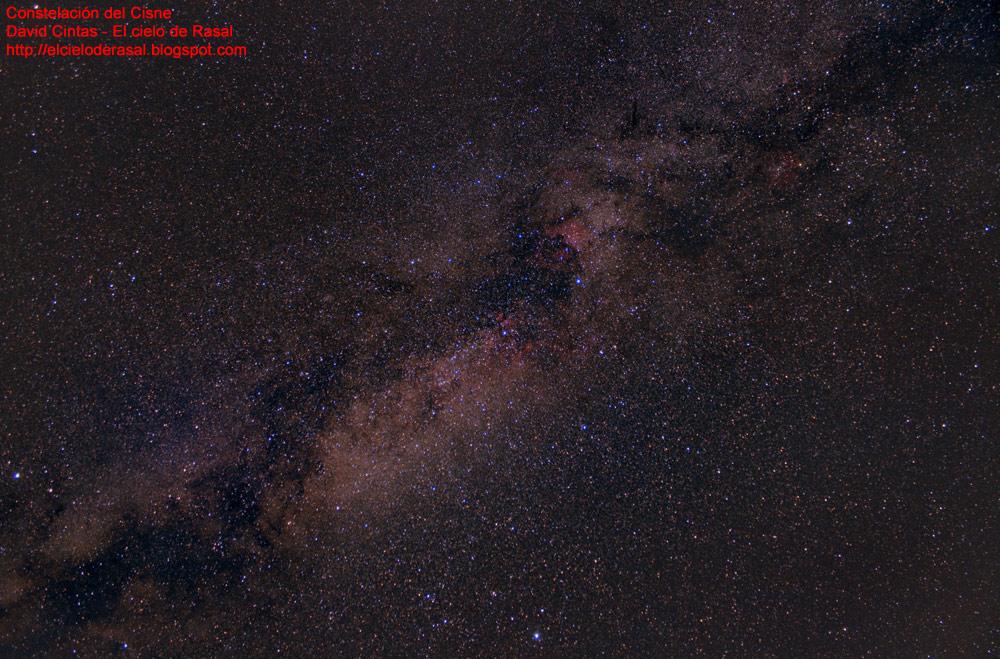 Cisne-constelacion-El-cielo-de-Rasal.jpg