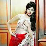 Samantha hot wallpapers in saree photo shoot