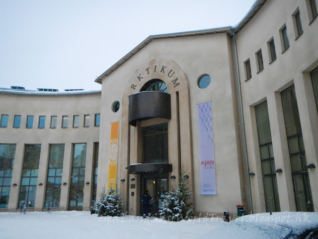 羅凡尼米, 博物館, Rovaniemi, Arkticum