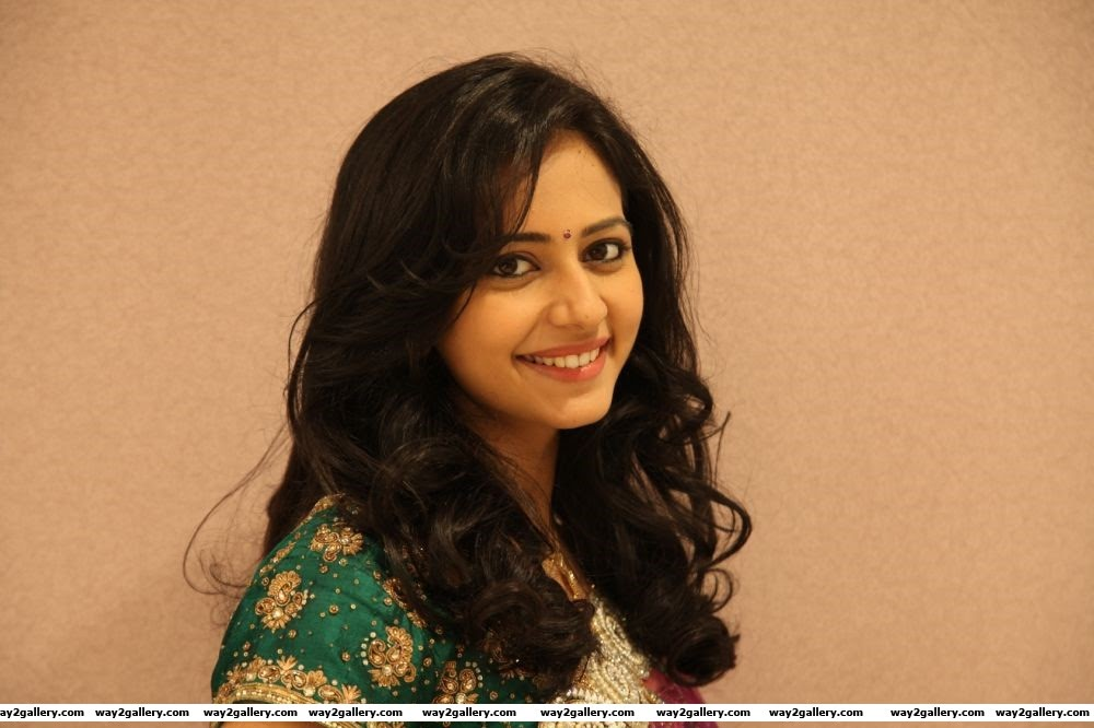 rakul preet singh photo gallery and rakul preet singh spicy gallery 14