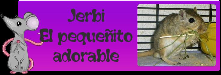 http://almaexoticos.blogspot.com.es/2014/05/jerbi-el-pequenito-adorable.html