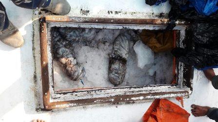 Kapal dengan Bom Ikan Ditangkap Bakamla RI di Selat Makassar