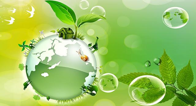 Conceitos de Ecologia