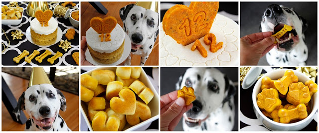 Dalmatian dogs with assortment of golden coloured dog treats and cakes