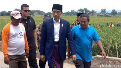 Bersarung dan Peci, Presiden Jokowi Keliling Sawah Cek Padat Karya Cash - Info Presiden Jokowi Dan Pemerintah