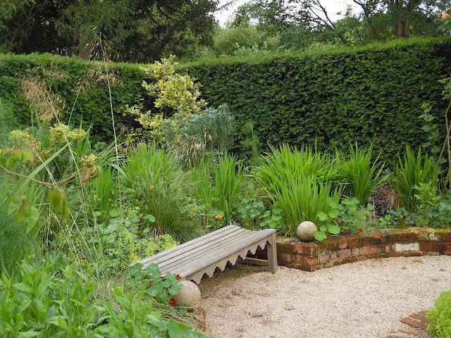 żywopłot z cisa, drewniana ławka, ogród angielski