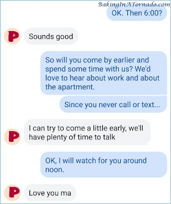 Screenshot of a conversation from A Bird, A Plane, Fly on the Wall | Picture property of www.BakingInATornado.com | #parenting