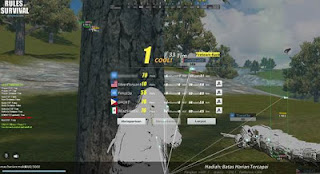rules of survival name invalid