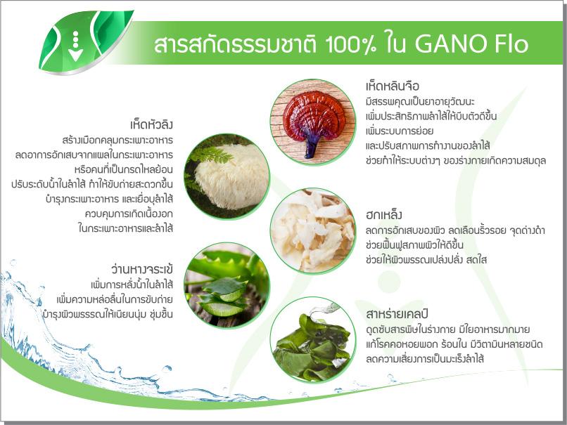 รีวิว Gano Flo กาโน โฟล อาหารเสริมดีท็อกซ์ธรรมชาติ จากประเทศนิวซีแลนด์ เป็นชนิดเม็ด รับประทานง่าย