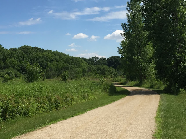 Trail to forest through prairie at Half Day Forest Preserve