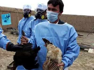 Waspada ! Dengan 10 Virus Paling Mematikan di Dunia