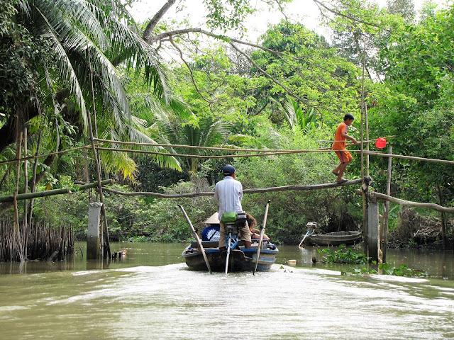 boat bamboo bridge across canal mekong delta vietnam