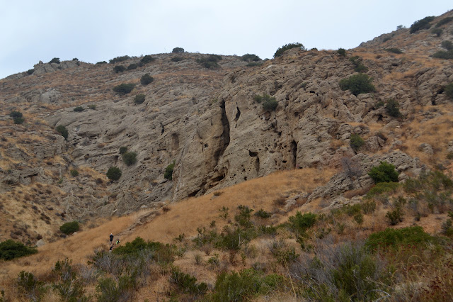 many holes in the rocks, generally very tall and thin