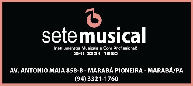 SETE MUSICAL - INSTRUMENTOS MUSICAIS E SOM PROFISSIONAL