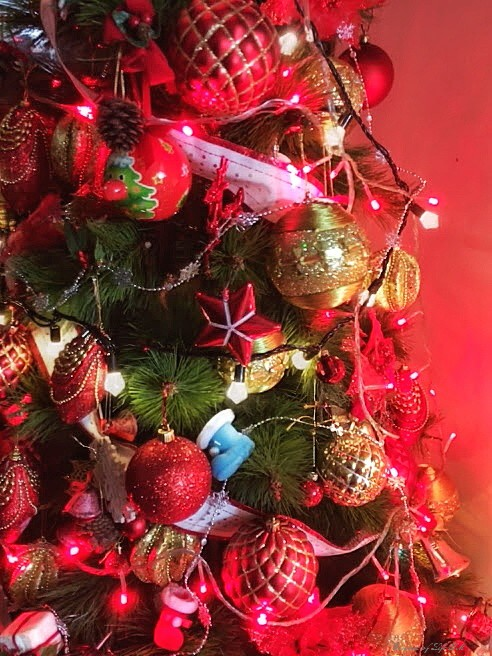 one time of the year i personally would like to visit kerala is during christmasonam my husband always says the real feel of christmas comes once you step