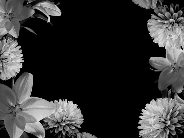 Black-Black and White-Wallpapers-Backgrounds