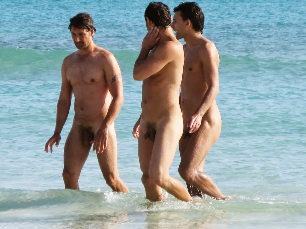 Dicks On Nude Beach