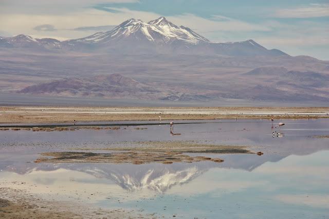 Vulcão Láscar e Laguna Chaxa, no Salar do Atacama