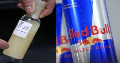 Energy-Drinks-red-bull-Contain-Bull-Urine
