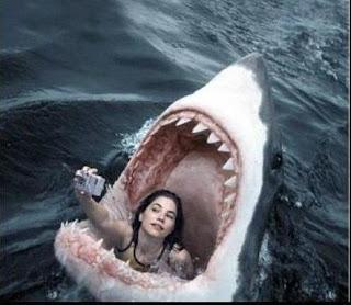 Ναρκισσισμός, φιλαυτία, δεν υπάρχει νόημα, καρχαρίας, φωτογραφία