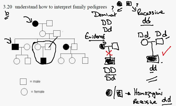 Michelle's Biology (:: 3.20) Pedigree Diagram