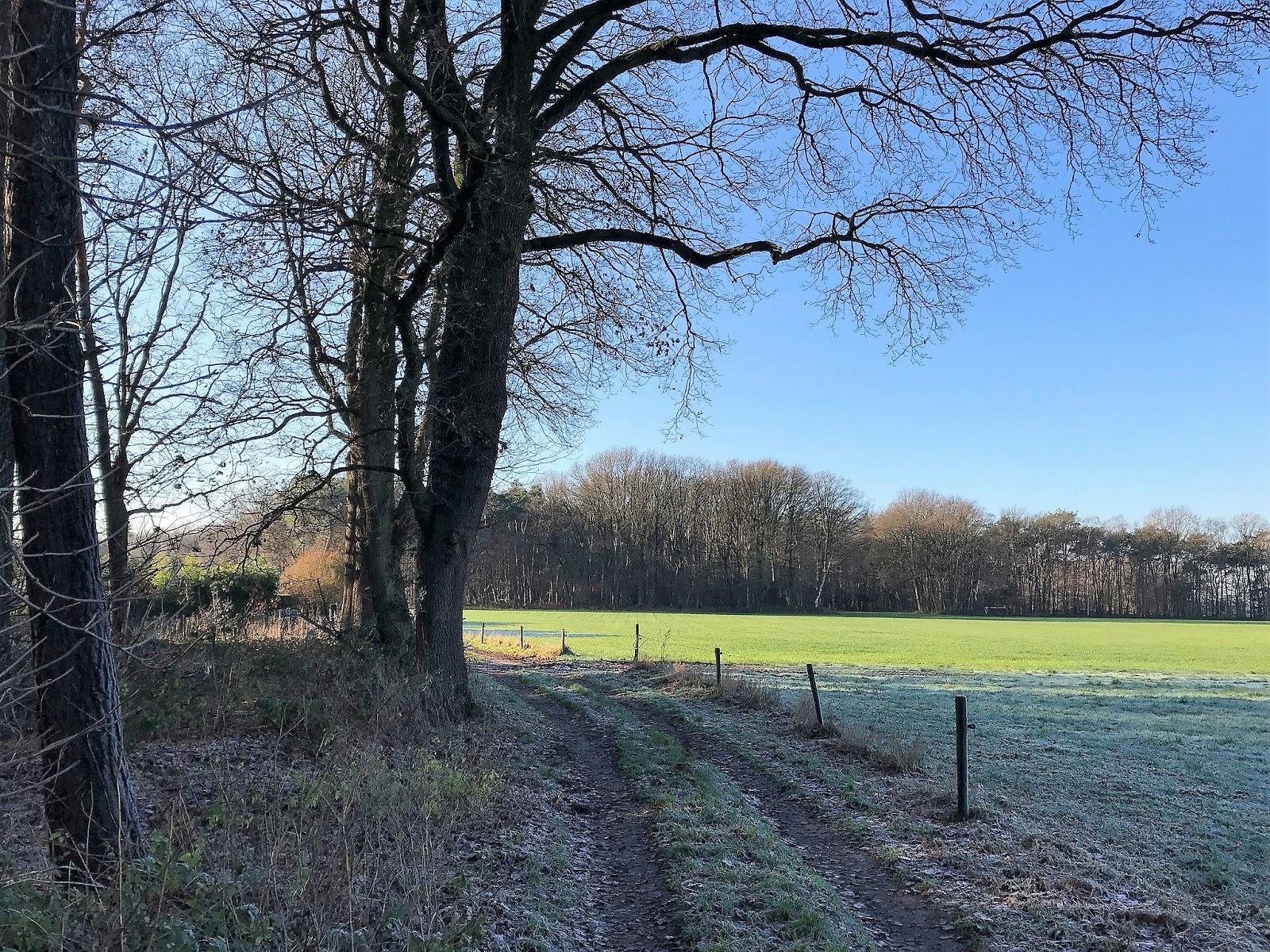 Mooiste Routes Wandelen Rond Bergeijk Noord Brabant