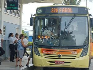 Festival de Outono tem ônibus extras com destino a Farol