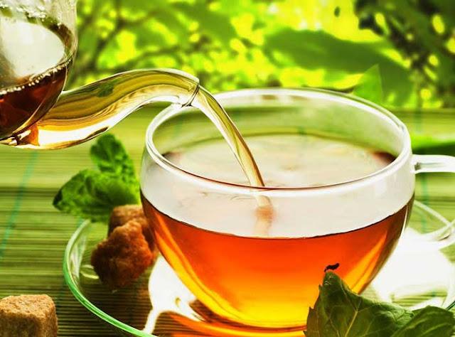 trà nấm linh chi tốt cho sức khỏe người già