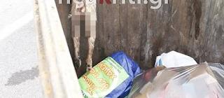 Αποτρόπαιο: Φριχτό θέαμα σε κάδο σκουπιδιών στο Ηράκλειο (photos)