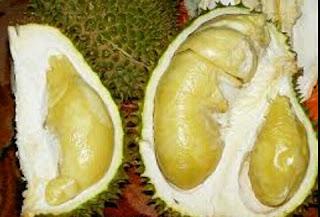 Tempat makan durian paling enak Jakarta