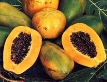 ALTERNATIVE THERAPEUTIC SOLUTION: The Use Of Pawpaw In
