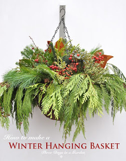 How to Make a Winter Hanging Basket