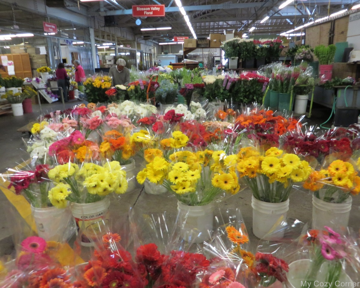 My Cozy Corner Visit to San Francisco Flower Mart