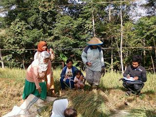 Pendataan Potensi Desa Oleh PNFI