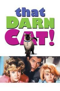Watch That Darn Cat! Online Free in HD
