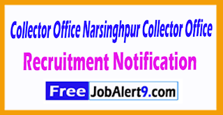 Collector Office Narsinghpur Recruitment Notification