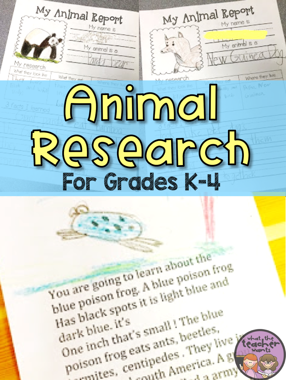 What The Teacher Wants K 4 Animal Research Projects