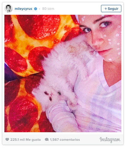 instagram de miley cyrus con cama de pizza