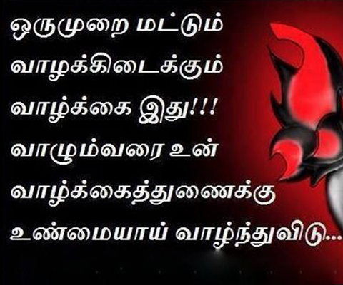 Love Quotes For Wife From Husband In Tamil Diamond Paradise