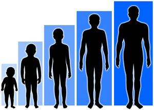 cara cepat menambah tinggi badan dalam waktu singkat