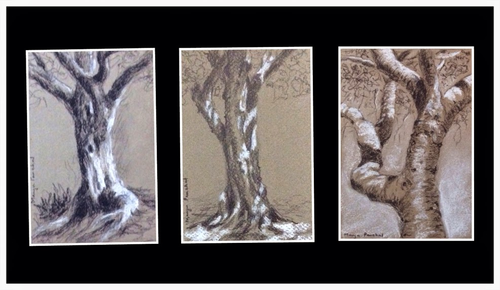 Three tree sketchings done using white soft pastel pencil and black charcoal by Manju Panchal