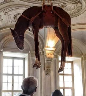 cavallo seviziato museo